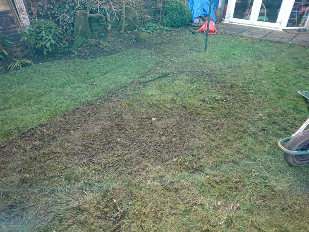 garden clearance haslemere